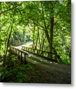 Green Nature Bridge Metal Print