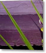 Green On Purple 6 Metal Print