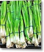 Green Onions Metal Print
