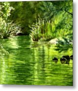 Green Reflections With Sunlit Grass Metal Print