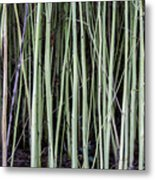 Green Sticks Metal Print
