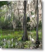 Green Swamp Metal Print