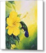 Green-throated Carib Hummingbird And Yellow Hibiscus Metal Print