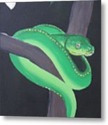 Green Tree Python Metal Print