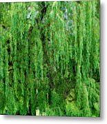 Green Tree View. Metal Print