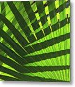 Green Weaver Metal Print