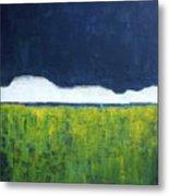 Green Wheat Field Metal Print