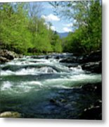 Greenbrier River Scene Metal Print