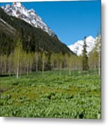 Greens And Blues Of The Maroon Bells Metal Print