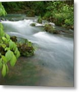 Greer Spring Branch 2 Metal Print