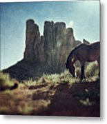 Greetings From The Wild West Metal Print