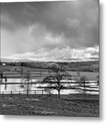 Grey Day Metal Print