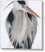 Grey Heron In The Snow Metal Print