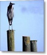 Grey Heron On A Pole Metal Print