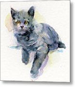 Grey Kitten Metal Print