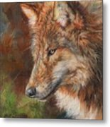 Grey Wolf Face Metal Print