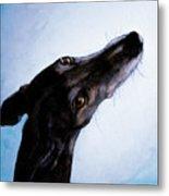 Greyhound - Always There Metal Print