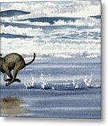 Greyhound At The Beach Metal Print