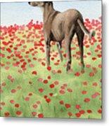 Greyhound In Poppies Metal Print