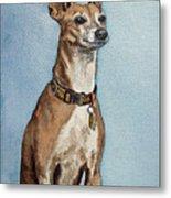 Greyhound Commission Painting By Irina Sztukowski Metal Print