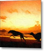 Greyhounds On Beach Metal Print by Michael Tompsett