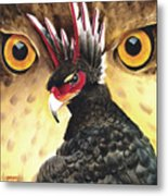 Griffin Sight Metal Print