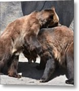 Grizzlies' Playtime 4 Metal Print
