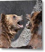 Grizzlies' Playtime 6 Metal Print