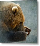 Grizzly Bear Lying Down Metal Print