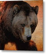 Grizzly Bear Painted Metal Print