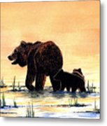 Grizzly Bears Metal Print