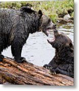 Grizzly Love Metal Print