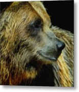 Grizzly Profile Metal Print