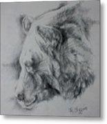 Grizzly Sketch Metal Print