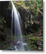 Grotto Falls In The Great Smokies Metal Print