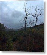 Grotto Trail In Rain Metal Print