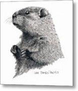 Groundhog Or Woodchuck Metal Print