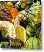 Group Of Gourds Expressionist Effect Metal Print