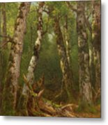 Group Of Trees Metal Print