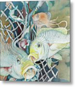 Groupers And Their Friends Metal Print