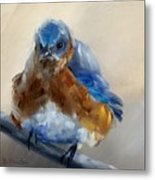 Grumpy Bird Metal Print