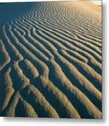 Guadalupe Dunes Metal Print