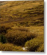 Guanella Pass Autumn Day I Metal Print