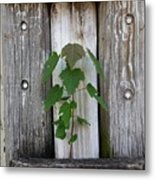 Guarded By The Ancients Metal Print