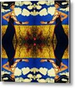 Guiar-symmetrical Art Metal Print