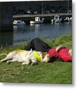 Guide Dog Relaxing Metal Print