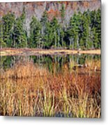 Guinea Pond - Sandwich New Hampshire Usa Metal Print