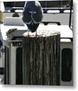 Gull And Pier 1 Metal Print