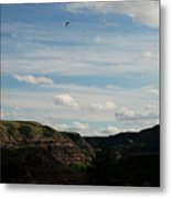 Gull Over The Badlands Metal Print