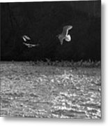 Gulls On The River Metal Print